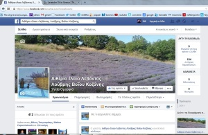 our page in fb