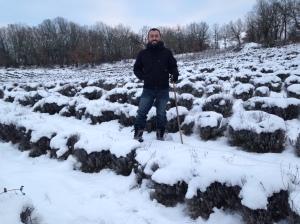 Χιονισμένο χωράφι λεβάντας στο χωριό Λούβρη Βοϊου Κοζάνης