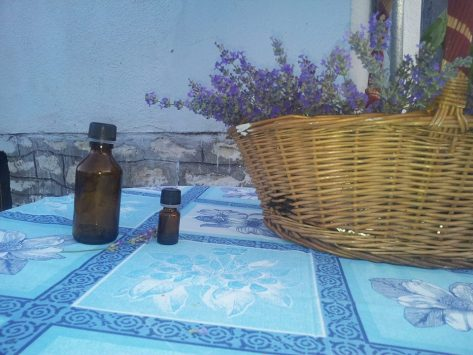 lavender bottle flower Greece
