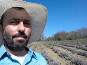Βασίλης Τζήμτσος Ξεχορτάριασμα σε χωράφι λεβάντας