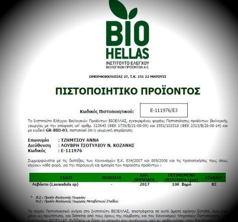 bio levanta βιολογικη λεβαντα