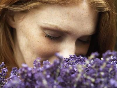Λεβάντα: Το φάρμακο της Φύσης για το άγχος